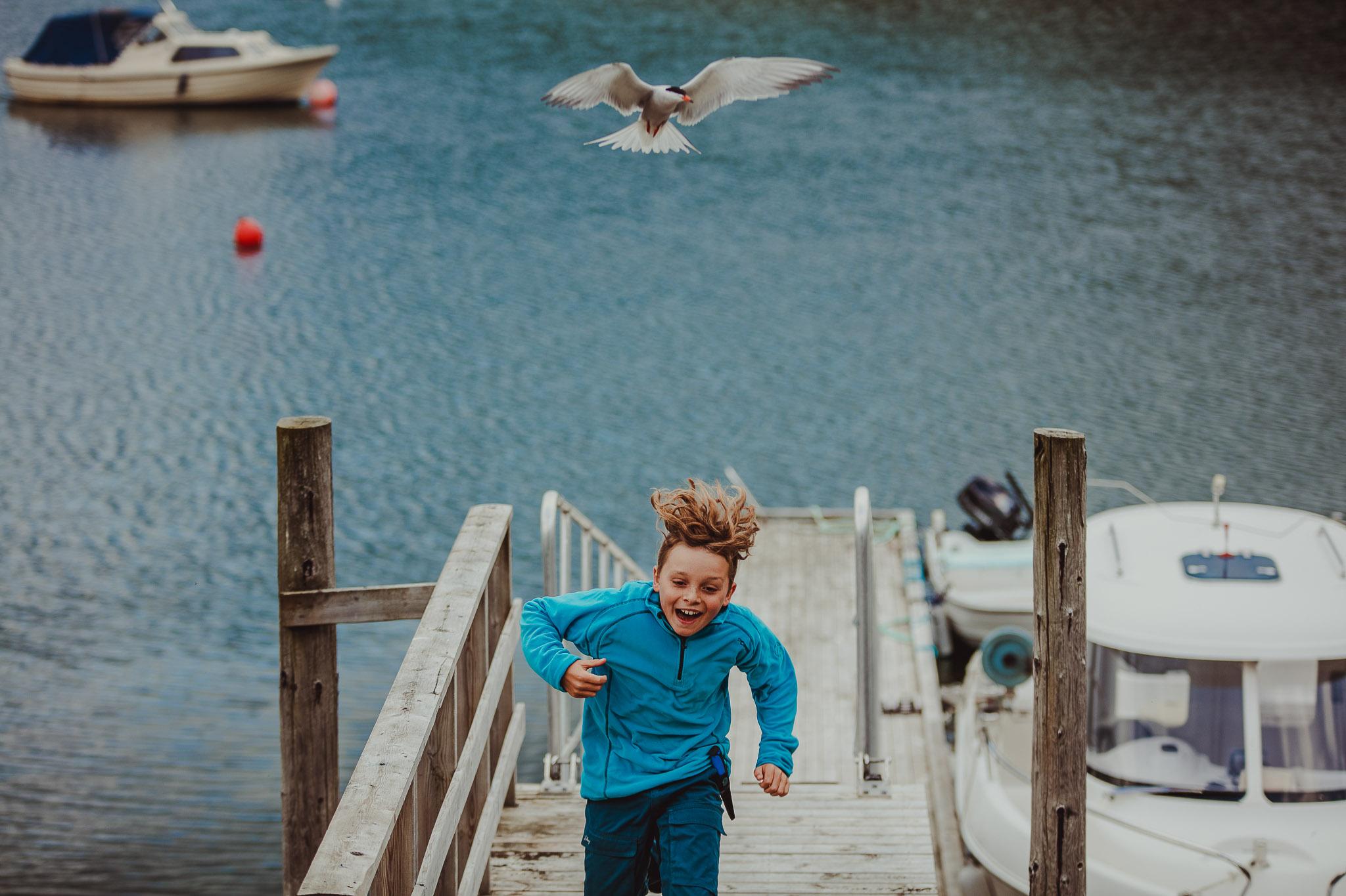 Gutt løper opp fra ei brygge ved havet mens han blir jaget av en fugl
